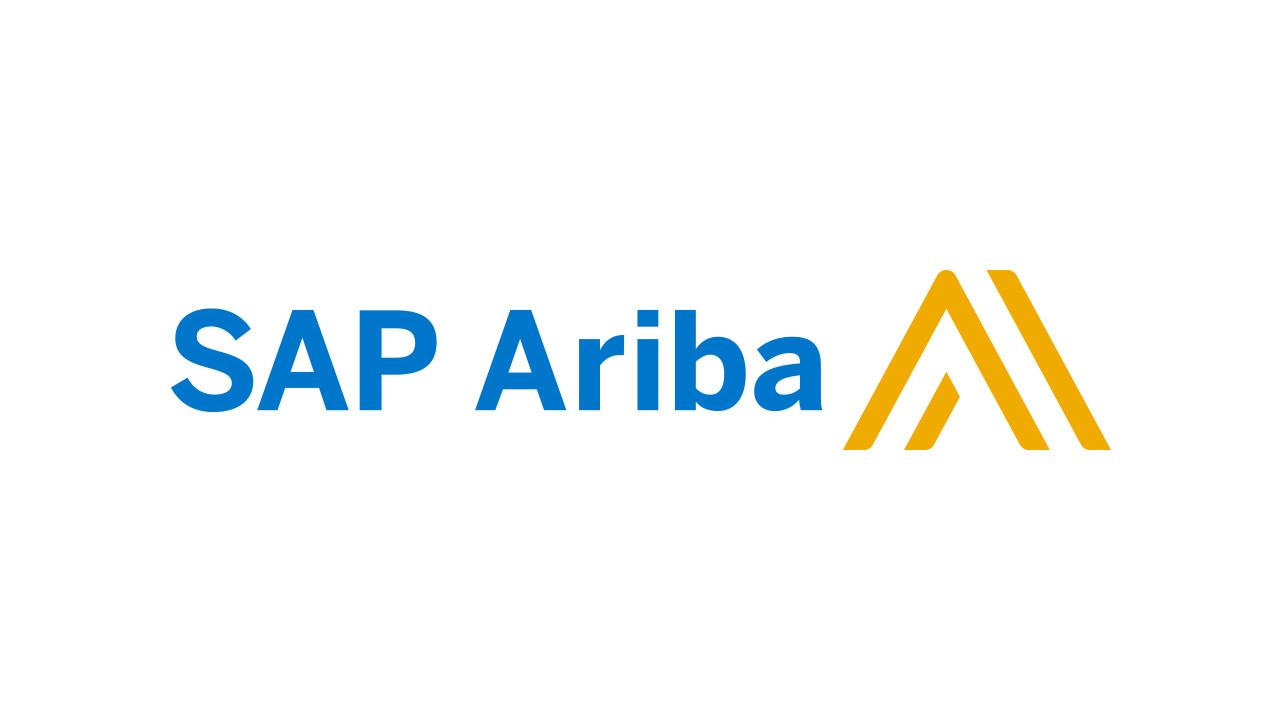 utilizar sap ariba