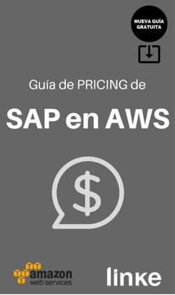 Descarga la Guía de Pricing de SAP en AWS