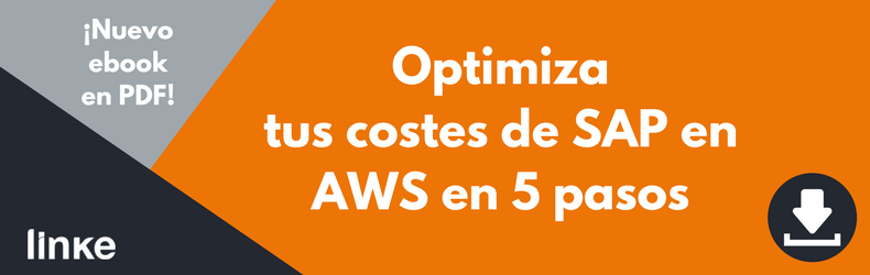 Linke SAP en AWS
